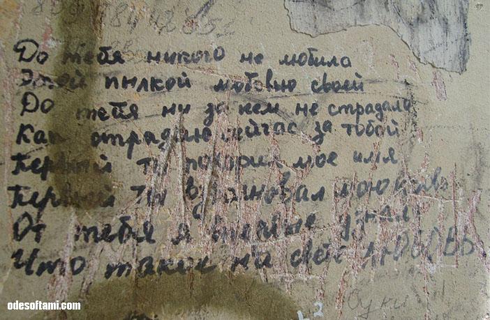 Мысли - замок в с. Петровка, Одесской области