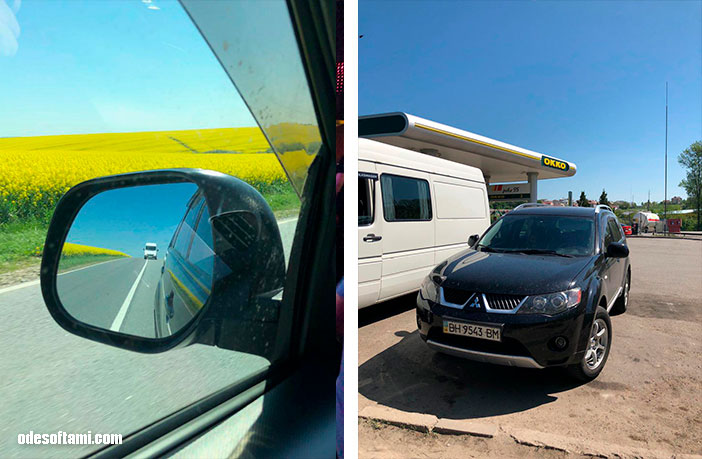Чистим перышки, после фото в рапсовом поле, Львов - odesoftami.com