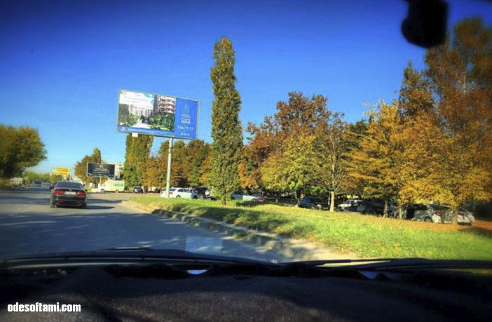 Золотая осень в Одессе
