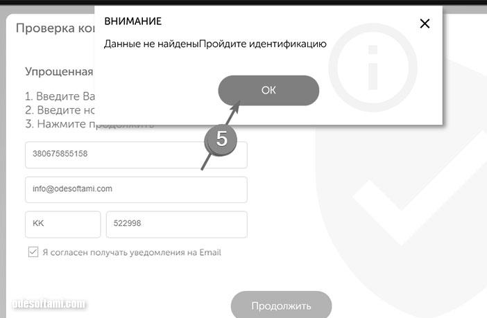 Как пройти идентификацию в QIWI Кошельке не резиденту РФ, проще простого через qiwid.com - odesoftami.com