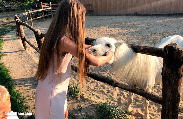 Вестерн ранчо дядюшки Бо,  Одесская область - odesoftami.com
