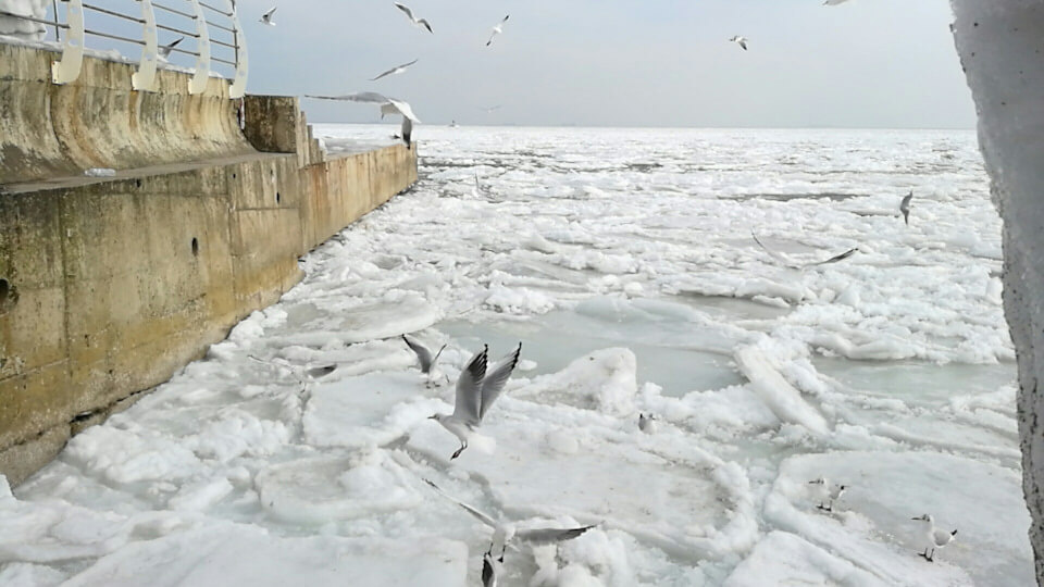 Замерзшее море или как мы проверли обед…