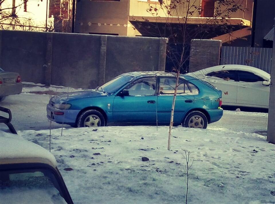 Морозы и снег.  Первый пост 2016…