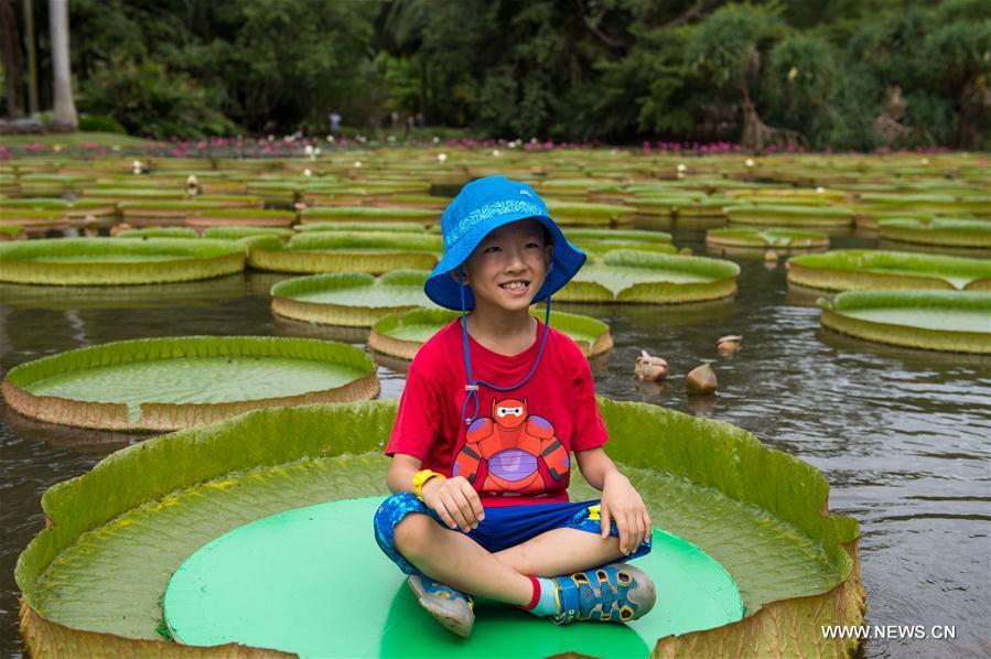 Прогулка по ботаническому саду Сишуанбаньна-Дайского
