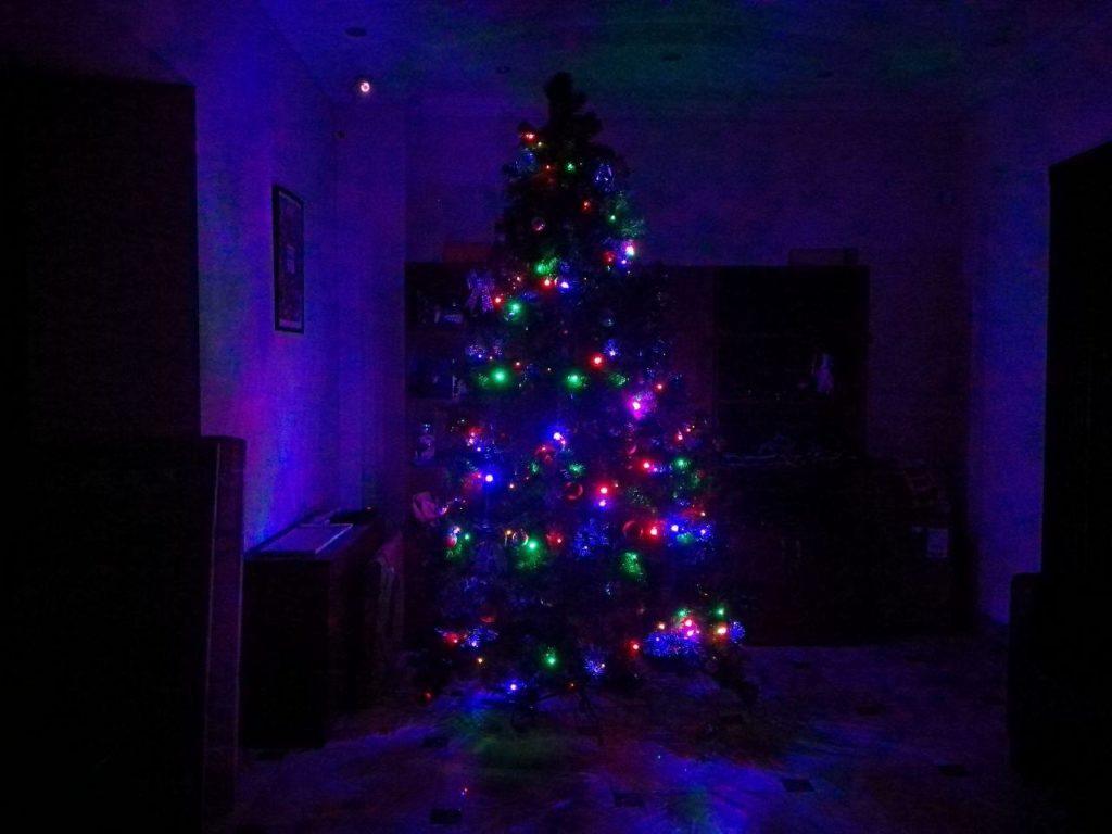 А тем временем в офисе поселилась елка...