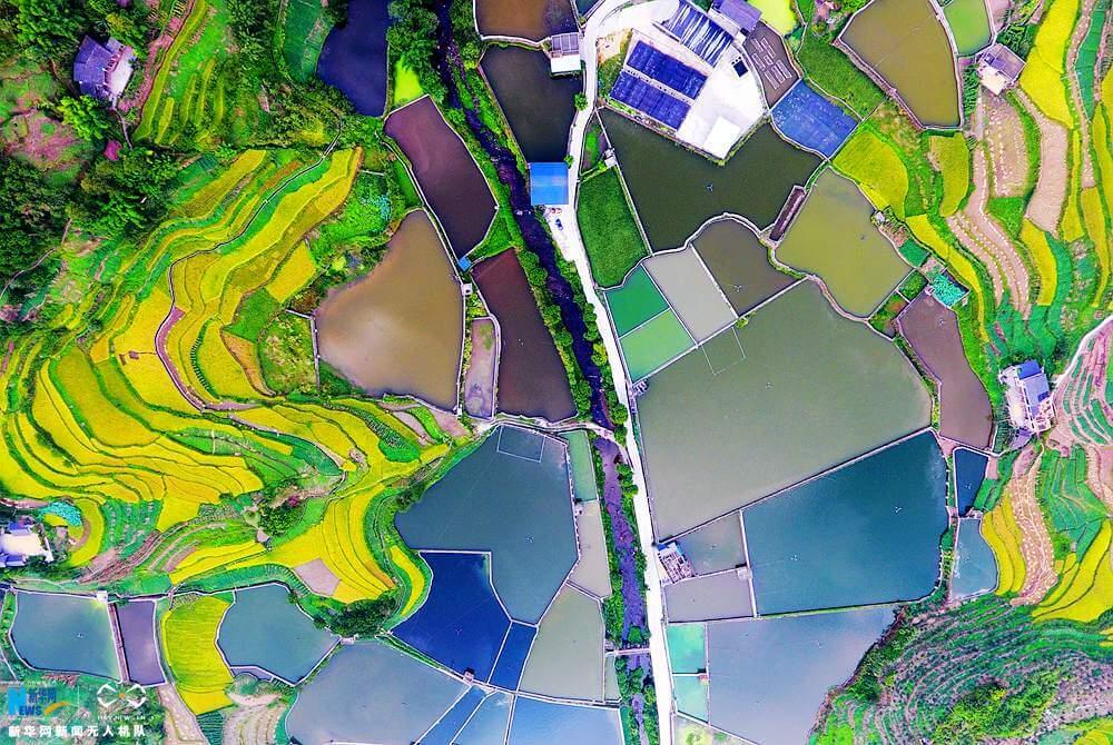 Поля в деревне Китая