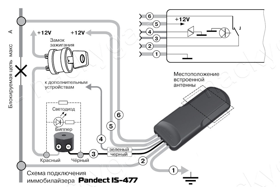 Посылка из Китая. Иммобилайзер — PANDECT IS-470