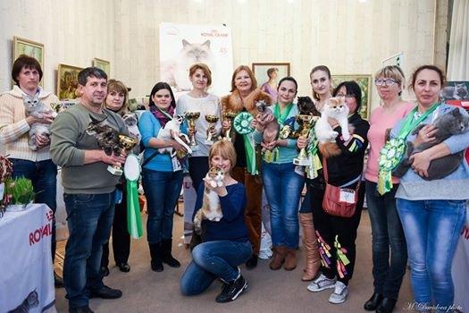 WCF выставка котиков г. Николаев 26-27 марта 2016
