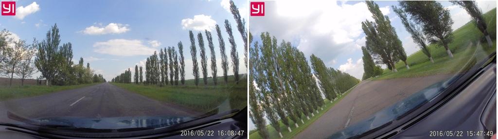 Путешествие на ферму страусов САВАННА (Николаевская область)