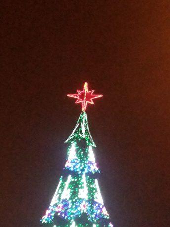 Первый в 2014м… Новый год… и ёлки Ильичевска ныне Черноморска