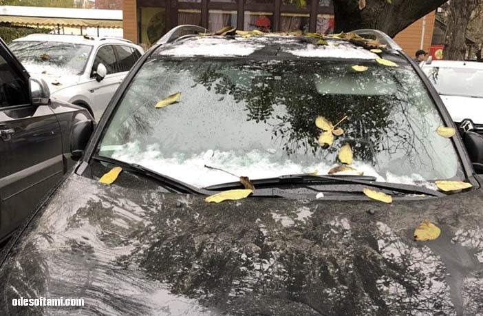 Первый осенний снег 2018 - odesoftami.com